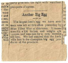 """Another Big Egg"" Newspaper Article"